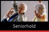 Seniortræning